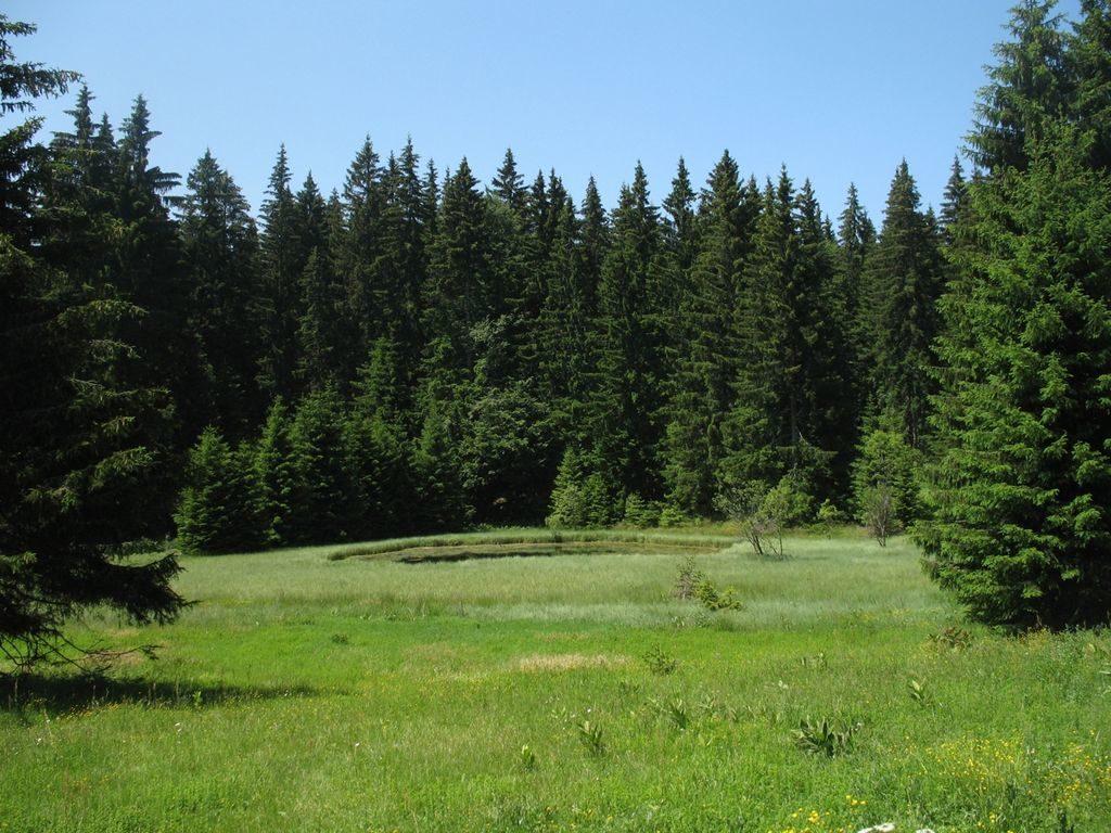 Озеро Тичар