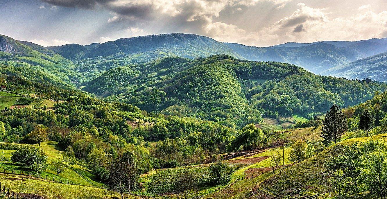 Гора Голия — малиновый  край Сербии