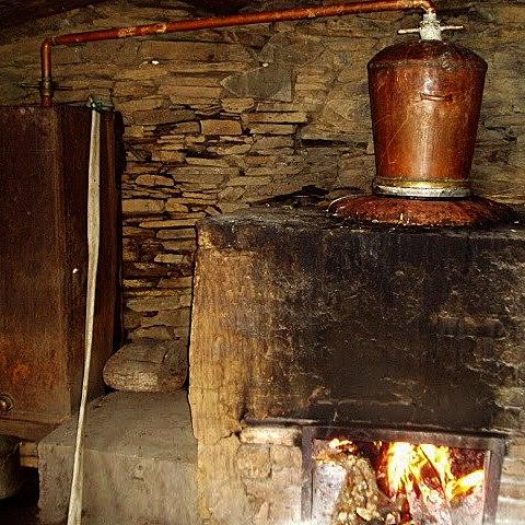 Изготовление ракия