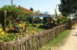 Этно-село «Караджорджев ваят»